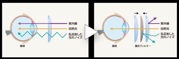 偏光は光のノイズを除去する